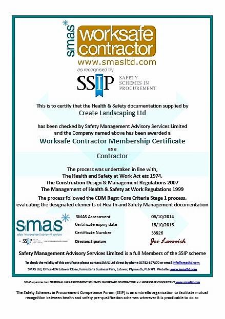 SMAS-SSIP-2014.jpg